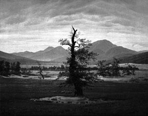 Caspar David Friedrich: Einsamen Baum (1823)